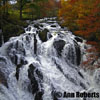 Swallow Falls by Ann Roberts